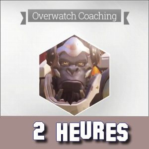 COACHING COACH OVERWATCH OW TOP PRO CS:GO MANAGER