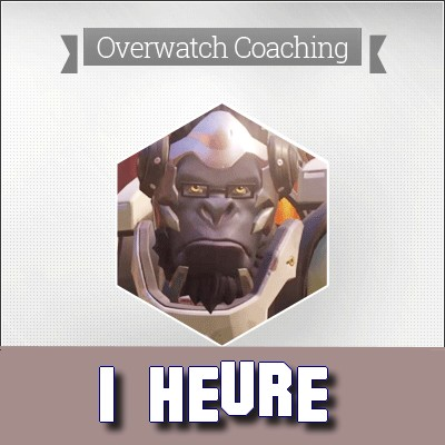 Coaching coach Overwatch Ow Cs:GO Pro