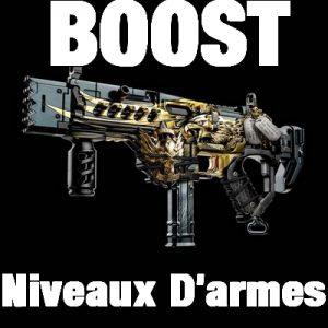 Monter niveau Armes COD Bo4